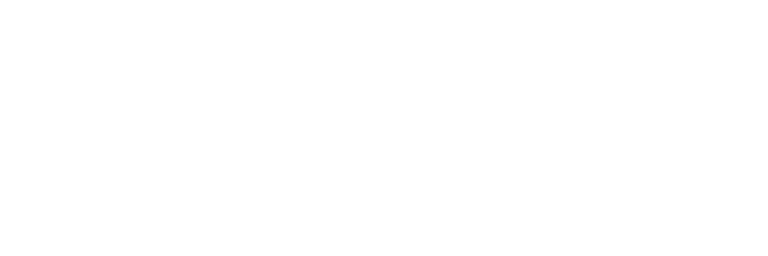 Website Wizards White Logo